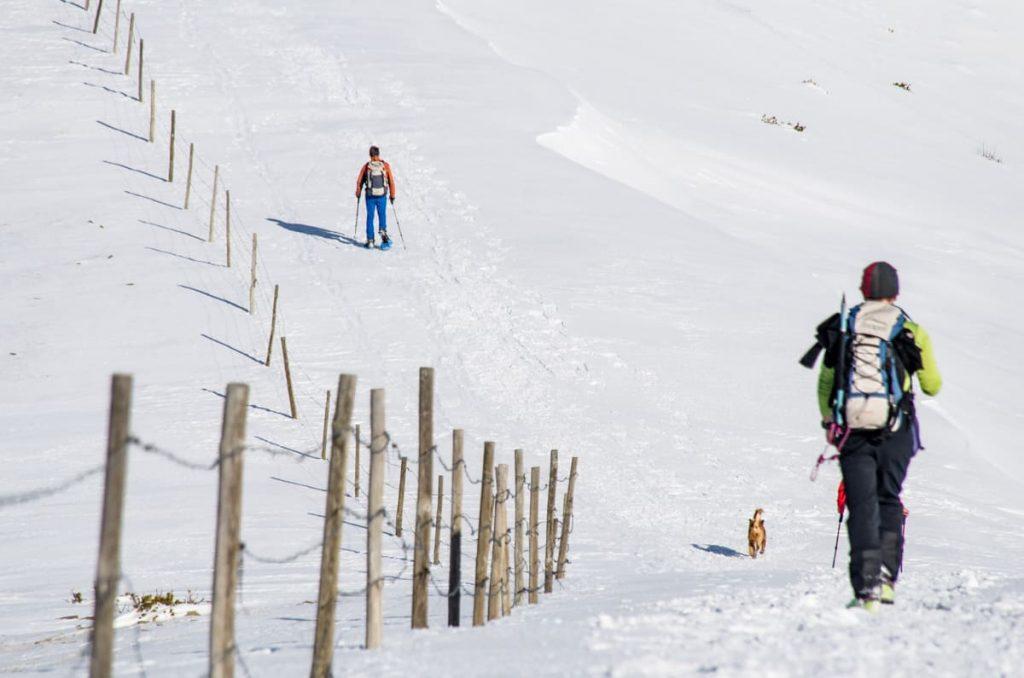 229 - Deportes invierno